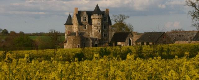 Château de Vaux en Anjou